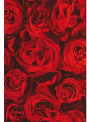 APPARAATROL KALEI RED ROSES 200MX30CM 1 ROL