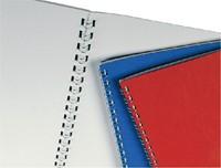 DRAADRUG GBC 12MM US 21RINGS A4 ZILVER 100 STUK